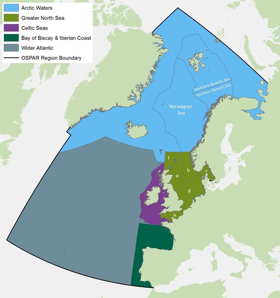 Marine Bird assessment units. North Sea sub-divisions: a) Northeast coast of Britain, b) West coast of Norway, c) Skagerrak and Kattegat, d) Southern North Sea, e) The English Channel, f) North coast of Scotland and the Northern Isles.